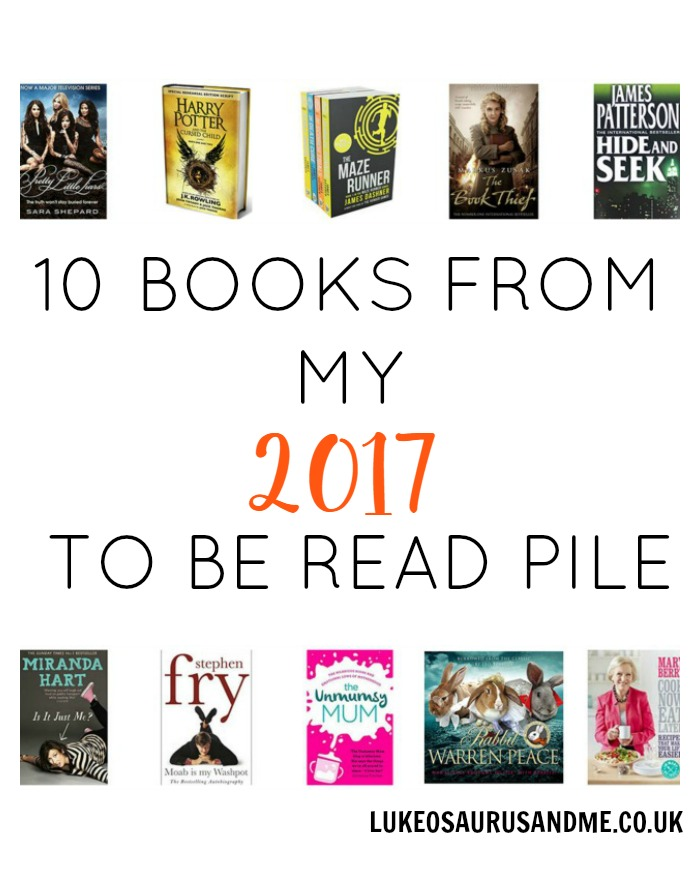 10 Books From My 2017 To Be Read Pile